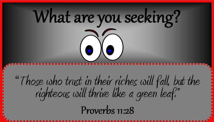 What are you seeking
