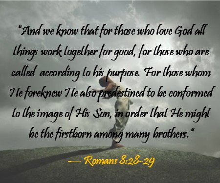 Image result for romans 8:28-29